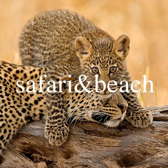 safari&beach